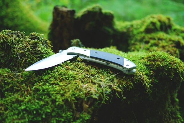 best wusthof classic knife reviews